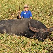 jonah buffalo.JPG