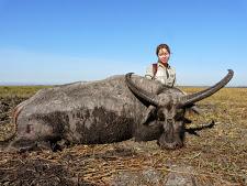 water-buffalo-hunting-15.jpg