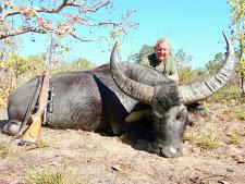 water-buffalo-hunting-3.jpg