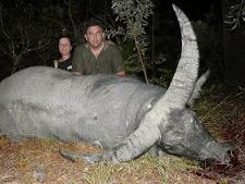 water-buffalo-hunting-safaris-16.jpg