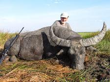 water-buffalo-hunting-safaris-3.jpg