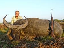 water-buffalo-hunting-safaris-30.jpg