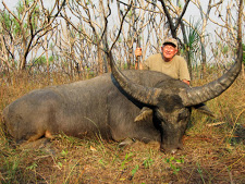 water-buffalo-hunting-safaris-4.jpg