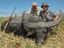 water_buffalo_hunting_19L.jpg