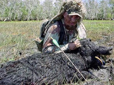 wild_boar_hunting_2_large.jpg