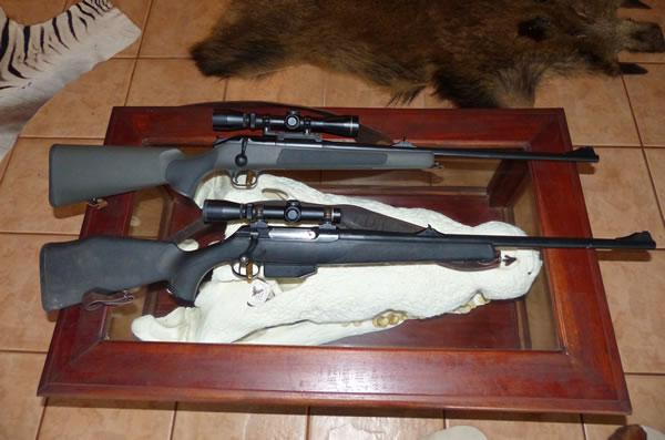 375H&H R93 Blaser, 375H&H Sauer 202